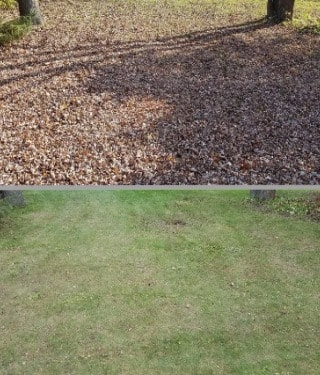 Leaf Cleanup Services in New Berlin, Wisconsin