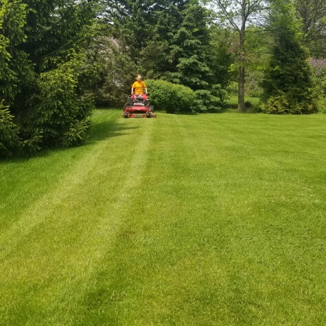 Quality Lawn Mowing in Waukesha Wisconsin